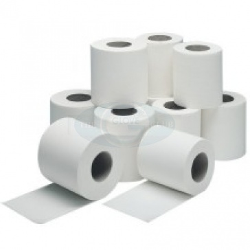 Economy Toilet Rolls - Case Of 36