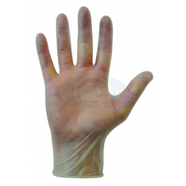 Powder Free Vinyl Gloves - 100 Gloves