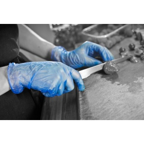 Powder Free Blue Vinyl Gloves - 100 Gloves